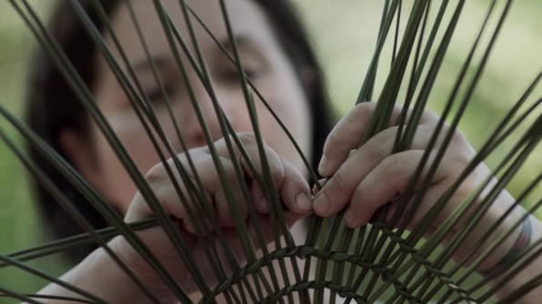 Tending the Wild Basket